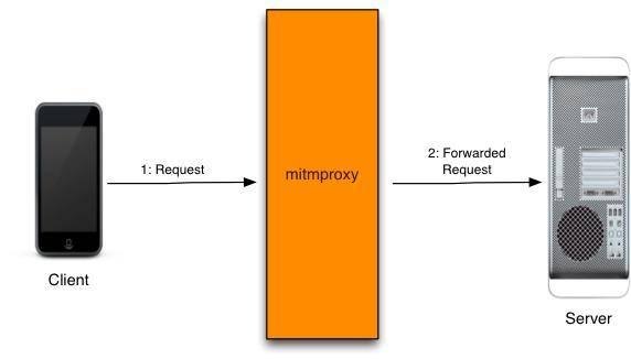 Mitmproxy - интерактивный TLS-совместимый