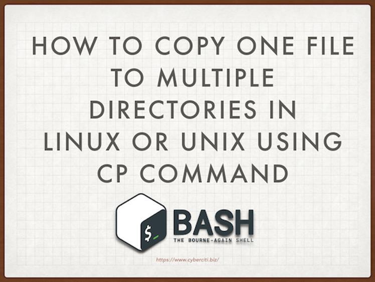 Как скопировать один файл в несколько каталогов в Linux или Unix