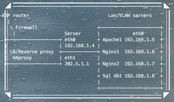 Как зарегистрировать реальный IP пользователя с помощью Nginx