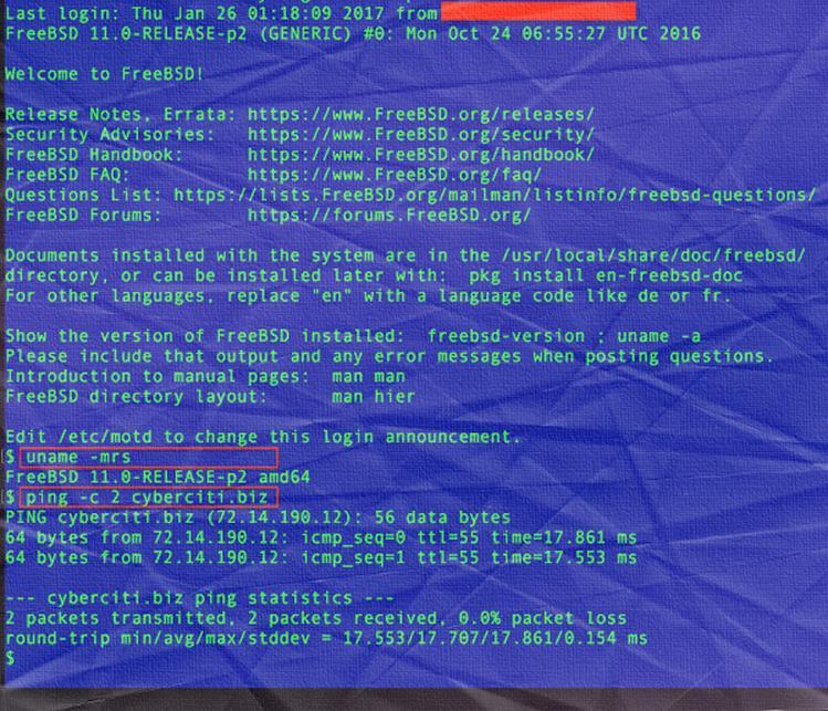 Как сделать ssh во FreeBSD 11 на сервере Google cloud compute?