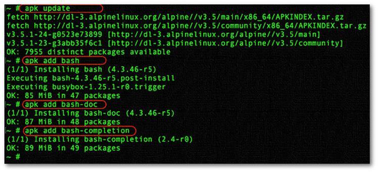 Как установить оболочку bash в моей виртуальной машине Alpine Linux LXD (Linux Container)